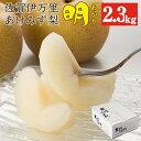 【送料無料】 明(2.3kg) 梨 明水 佐賀 伊万里 九州