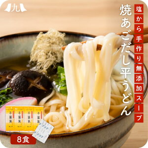 産地直送 【無添加焼きあごスープと平たいうどん 8食】九州 お取り寄せ 無添加 あごスープ 平麺 お試し 送料無料