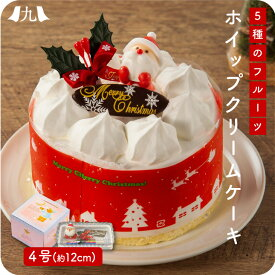 【2020年予約受付】クリスマスに間に合う受付は12月12日まで!クリスマスケーキ 5種のフルーツ入りホイップクリームケーキ 4号サイズ(12cm)【送料無料】