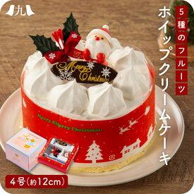 2021年予約受付【 クリスマスケーキ 5種のフルーツ入りホイップクリームケーキ 4号(12cm)】