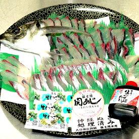 関アジ姿刺身盛り 大1尾【4〜5人前】【代引き不可】【関あじ】【冷凍発送】【大分県佐賀関のスーパーブランド】【お中元】【お歳暮】【父の日】