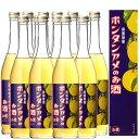 南国特産 ボンタンアメのお酒 6度 500ml 化粧箱入り 12本セット【送料無料】