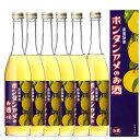 南国特産 ボンタンアメのお酒 6度 500ml 化粧箱入り 6本セット【RCP】