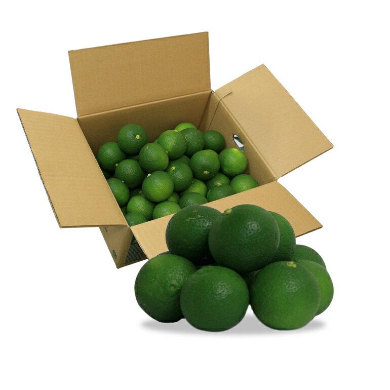 大分竹田産かぼす青果1箱 10Kg(秀品)【受注発注】【貯蔵カボス】【秀品】