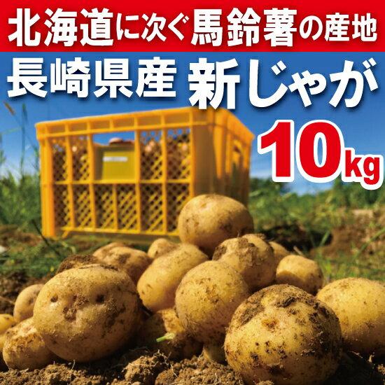 【春じゃが】新じゃが【日本一】じゃがいも長崎県島原産馬鈴薯10kg【鉄腕DASH!】ジャガイモ ばれいしょ☆【送料無料】