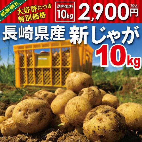 【秋じゃが】新じゃが【日本一】じゃがいも長崎県島原産馬鈴薯10kg【鉄腕DASH!】ジャガイモ ばれいしょ☆【送料無料】
