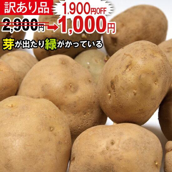【訳あり】新じゃが【日本一】じゃがいも長崎県島原産馬鈴薯10kg ジャガイモ ばれいしょ☆【送料無料】