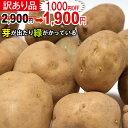【訳あり】新じゃが【日本一】じゃがいも長崎県島原産馬鈴薯10kg ジャガイモ ばれいしょ 【数量限定】【送料無料】