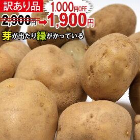 【訳あり】春じゃが【日本一】じゃがいも長崎県島原産馬鈴薯10kg ジャガイモ ばれいしょ 【数量限定】【送料無料】