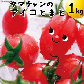 【完熟ミニトマト】アイコトマト1kg送料無料【真っ赤なあいこ】