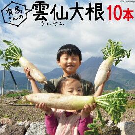 【長崎県産 送料無料】雲仙 だいこん 10本 【 大根 葉付き 葉つき だいこん おでん 長崎 】