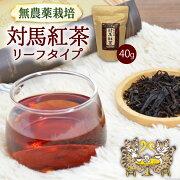 【送料無料】対馬紅茶リーフ40g(単品)茶葉無農薬お取り寄せ国産紅茶和紅茶メール便猫