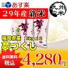(送料無料)(29年産新米)(福岡県産)夢つくし5kg×2袋(10kg)(お米)