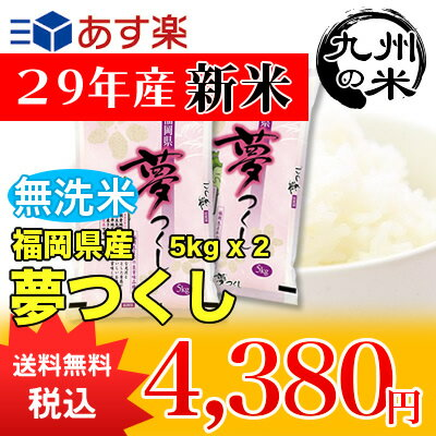 (送料無料)(29年産新米)【無洗米】福岡県産夢つくし5kg×2袋 【10kg】