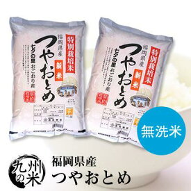 (送料無料)【無洗米】(30年産)(減農薬) つやおとめ 5kg×2袋 【10kg】(ショップ・オブ・ザ・イヤー2018ジャンル賞受賞)