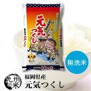 (送料無料) 【無洗米】(令和2年産新米)福岡県産元気つくし 5kg