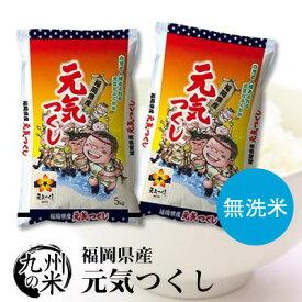 送料無料 無洗米 令和2年産 福岡県産元気つくし10kg(5kg×2袋)