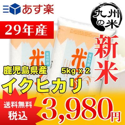 (送料無料)(29年産新米)鹿児島県産イクヒカリ 5kg×2袋 【10kg】