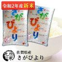 (送料無料) (数量限定一等米)(令和2年産新米)(1等米)佐賀県産さがびより5kg×2袋【10kg】(全国食味ランキン…