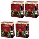 サンタ・レジーナ カベルネソービニヨン(赤ワイン/ミディアム)3000ml1ケース(4本)