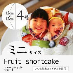 """【2〜4人向け】7種類の果物をふんだんに使用した""""フルーツいっぱいショート"""""""