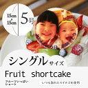 """【5〜6人向け】""""写真プレート付き""""7種類の果物をふんだんに使用した""""フルーツいっぱ..."""