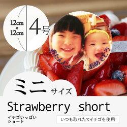 """【2〜4人向け】""""写真プレート付き""""人気のイチゴをたっぷり使用した""""イチゴいっぱいショート"""""""