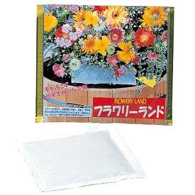 アーネスト フラワリーランド 1パック A-28192ガーデニング 花の種 フラワー 園芸 アーネスト 【D】【B】