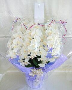 アーティフィシャルフラワー「造花」の光触媒コーティング【胡蝶蘭鉢植え・5本立(W/Y)※プラ鉢にブルーパープル系のラッピング】(※先端まで花が付いています)