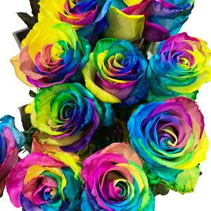 レインボーローズ 60本 バラ花束 【送料無料 七色 バラ 花束 60本 バラ花束 薔薇花束 還暦 誕生日 結婚記念日 お祝い ホワイトデー プレゼント 開店祝い 舞台 祝い サプライズギフト】