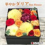 https://www.rakuten.ne.jp/gold/la-floraison/keirou/boxred1.jpg