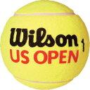 【よりどり5個で送料無料】Wilson(ウイルソン)USオープン ミニ ジャンボボールWRT1415U【定番】●●