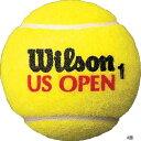 ウイルソン オープン ジャンボ