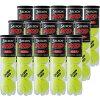 【送料無料】【4個入り15缶】DUNLOP(ダンロップ)SRIXON(スリクソン)硬式テニスボール15缶(4球入り×15缶)1箱SRXHD4TIN-15SET【15☆】●●
