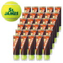 【送料無料】【4個入り15缶2ケース】DUNLOP(ダンロップ)St.JAMES(セント.ジェームス)テニスボール DSTJAMESA●●