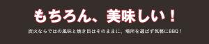 無煙炭火バーベキューコンロスモークレスバーベキューグリルBBQコンロ七輪専用ケース付アウトドアキャンプ【送料無料】/###コンロBC-108###