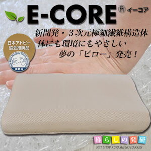E-CORE枕  三次元網状構造体枕 日本アトピー協会推薦品 【smtb-TD】【saitama】