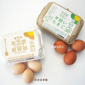 【烏骨鶏 本宮もみじ 6個入り】 卵 シフォンケーキ 平飼い卵