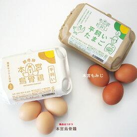 【本宮烏骨鶏 6個入り】 卵 シフォンケーキ 平飼い卵
