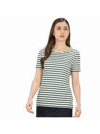 [Rakuten Fashion]ボーダーTシャツ(半袖) LACOSTE ラコステ カットソー Tシャツ グリーン ネイビー レッド【送料無料】