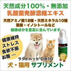 ペットサプリメントラクトペットDR10【犬・猫・フェレット用天然成分100%健康のためのサプリ/栄養補助】