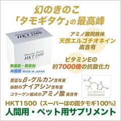 タモギタケ幻のきのこ「たもぎ茸」の最高峰スーパーほの国タモギ100%
