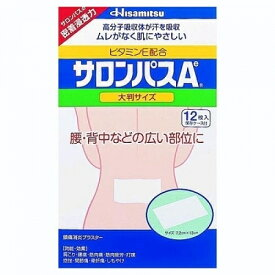 【第3類医薬品】サロンパスAe 大判サイズ 12枚