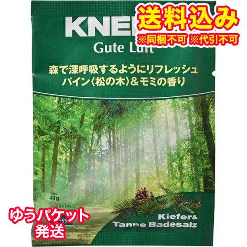 【ゆうパケット送料込み】クナイプ グーテルフト パイン&モミの香り 40g