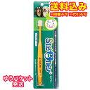 【ゆうパケット送料込み】シグワン小型犬用歯ブラシ 1個※取り寄せ商品(注文確定後6-20日頂きます) 返品不可