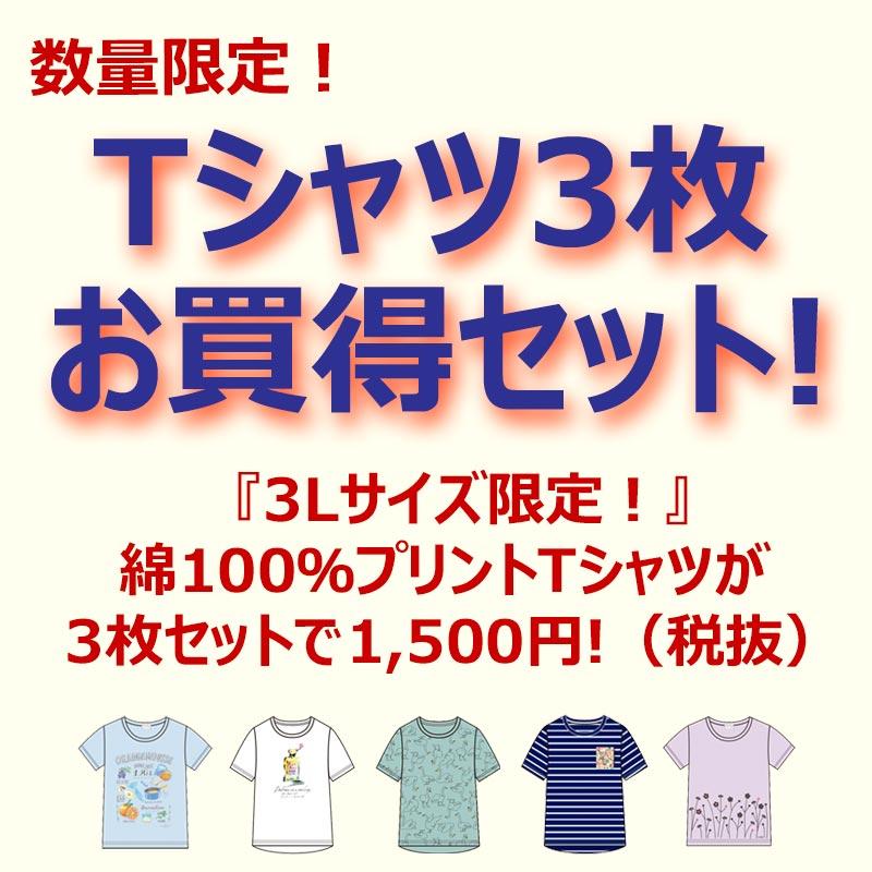 Tシャツ3枚お買得セット 福袋 レディース 半袖 かわいいプリントのTシャツが3枚で1500円 ハッピーバッグ 3Lサイズ 大きいサイズ 綿100% 数量限定! アウトレット 訳あり