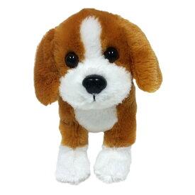 ビーグル 子犬 激安