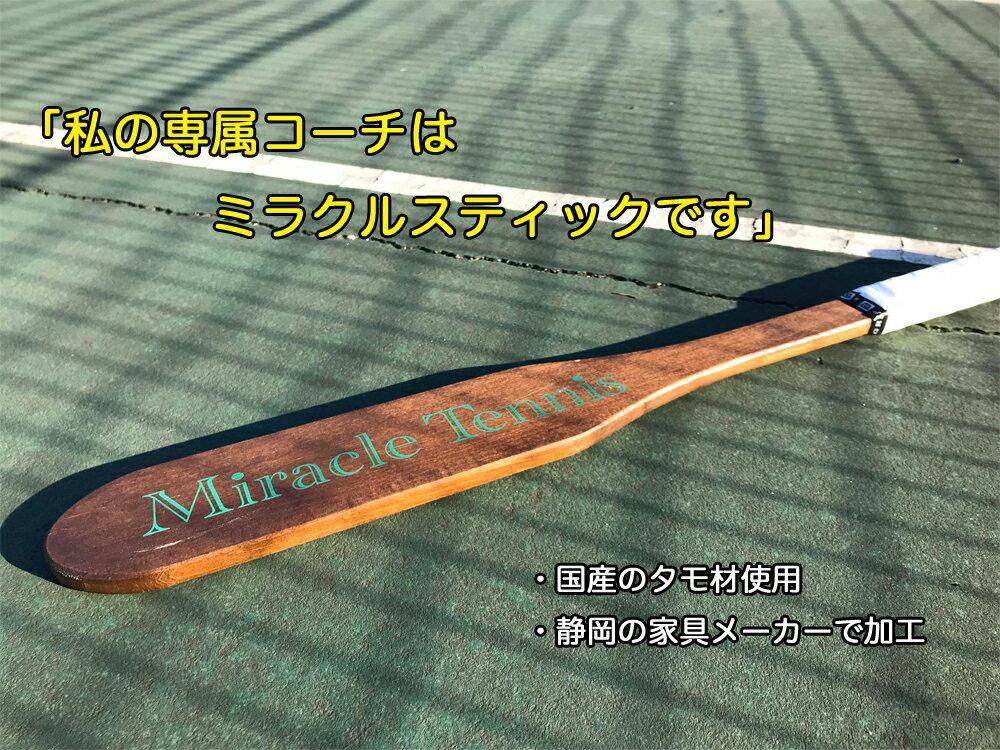 【予約☆7月中旬入荷分】ミラクルスティック MS-002 打ち方の欠点がすぐ発見できる魔法の打ち方直す! 木製ラケット
