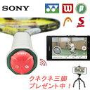 Sony-sts-w350-1