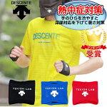 デサント(DESCENTE)熱中症対策深部体温を下げるコアクーラー適温蓄冷材付き(2個入り両手用)DAT-9000